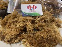 Dried Sea Moss