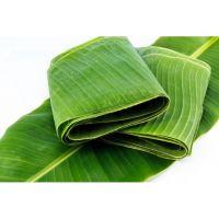 Indonesian Banan Leaf