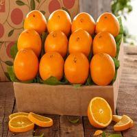 100% Pure Natural Fresh Citrus Naval Oranges, Valencia Orange, Lemons, Mandarins