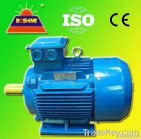 Y AC IEC Induction Electrical Motor
