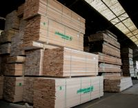 Logs Straight Edge Lumber kd