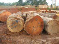 Bubinga Hardwood Timber Logs