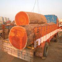 Padouk Hardwood Timber Log