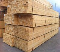 Square Edge KD Timber