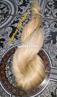 Scutched Flax Fibers