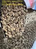 INDONESIA ARABICA and ROBUSTA COFFEE BEANS