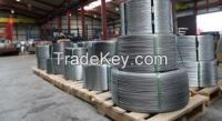 High carbon steel wire (bright/galvanized/annealed)