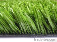 Fibrillated Artificial Grass for Football Field