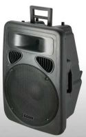 2-ways activer speaker box with USB and MP3