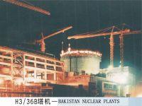 Advanced Tower Crane and construction hoisting