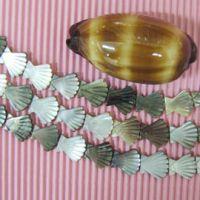 seashell jewellery