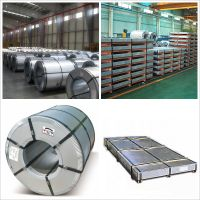 Cold rolled steel sheet & coil (CR)