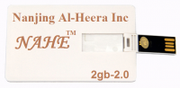 Card Shape USB Flash Drive