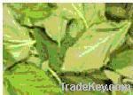 Dry Molokhiea leaves