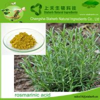 Factory supply Rosmarinic acid,Rosemary extract,Preservative