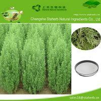 98%-99% Artemisinin of Artemisia annua extract; plant extract