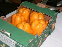 Vegetables ( Pepper)