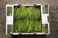Salsabeel Mixed Fresh vegetables
