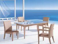 Patio Hot Sale Rattan Dining dining set C046