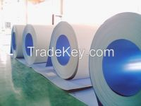 Kinds of Galvanized Steel Sheet & Prepainted Steel Sheet & Galvalume S