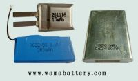 Polymer Rechargeable Batteries