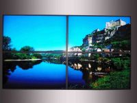 Advertising LCD Video Panel (Wall 700 Units)
