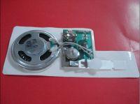 Sound module/ sound chip