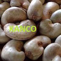Wholesale Cashew Nut | Discounted Cashew Nut | Bulk Cashew Nut | Cashew Nut Suppliers | Cashew Nut Exporters | Cashew Nut Manufacturers | Cashew Nut Buyer | Import Cashew Nut | Cashew Nut Importers