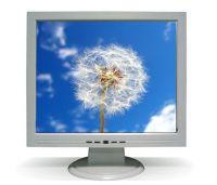 """new 17"""" LCD monitor"""