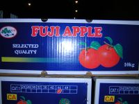 Supply red fuji apple