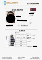 Driving License Translation