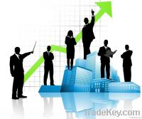Web SEO Services