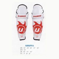 Sport Protector