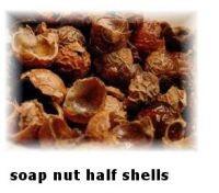 Soapnuts (Whole, Half shells and Powder)