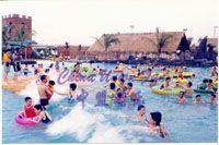 wave pool/wave machine/water park: WRW004