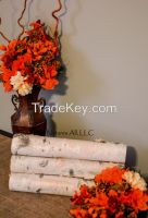 Decorative White Birch Logs/6 Piece Set For Home Décor: