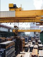 Hot selling double girder magnetic overhead crane 380V