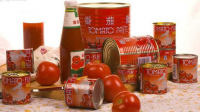 Turnkey Industrial Tomato Dilution Processing Line