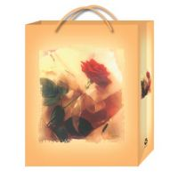 Gift, promotional and shopping bags