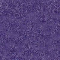 texture powder coating