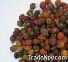 Rose Hip Extract / Wid Yam Extract