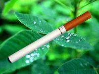 Electronic Cigarette & E-Cigarette