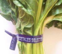 vegetable tie