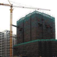 QTZ63(TC5013)Self-erecting Tower Crane