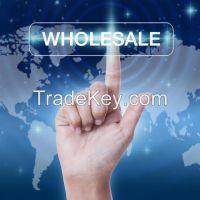 Wholesale Liquidated Women's Lots