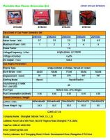 Portable Gas Power generator Set