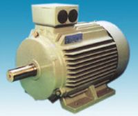 Y2 Series Three-phase Asynchronous Electric Motor