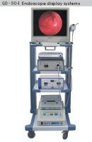 Endoscope Display System
