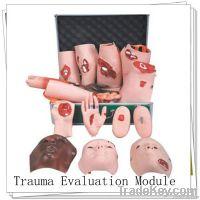 Medical training Trauma Evaluation Module