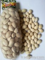 Ginkgo / Ginkgo nut/White nuts